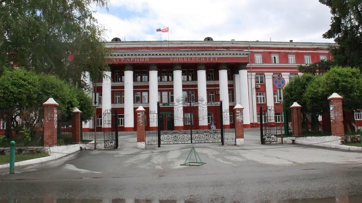 Новосибирский государственный аграрный университет лишился аккредитации по 4 направлениям