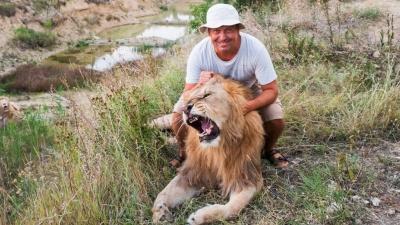 Подёргать за хвост и остаться в живых: фотограф из Екатеринбурга снял игрища крымских львов