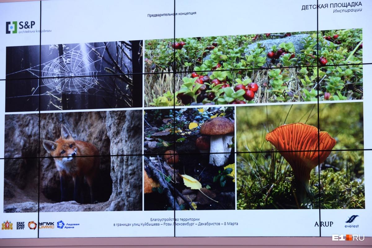 Уральская природа вдохновила авторов проекта на создание детской площадки