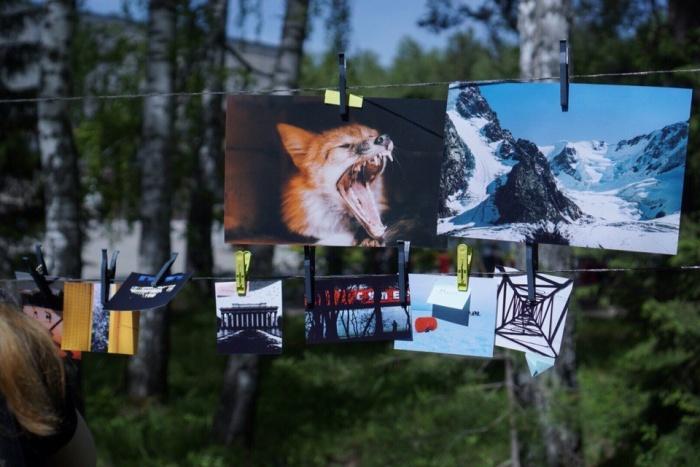 «Фотосушка» в Новосибирске