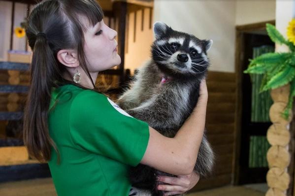 Контактные зоопарки в торговых центрах теперь заводить нельзя