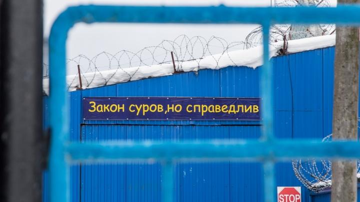 «Не отдавал зарядку»: жители Коношского района получили строгача за жестокое убийство пенсионера