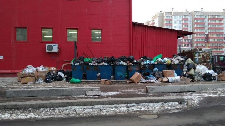 Мусор со свалки у торгового комплекса завалил дворы соседних домов на Молокова