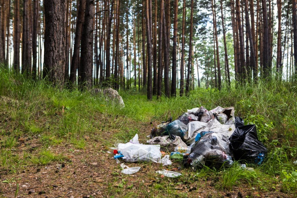 Туристы оставляют после себя много мусора