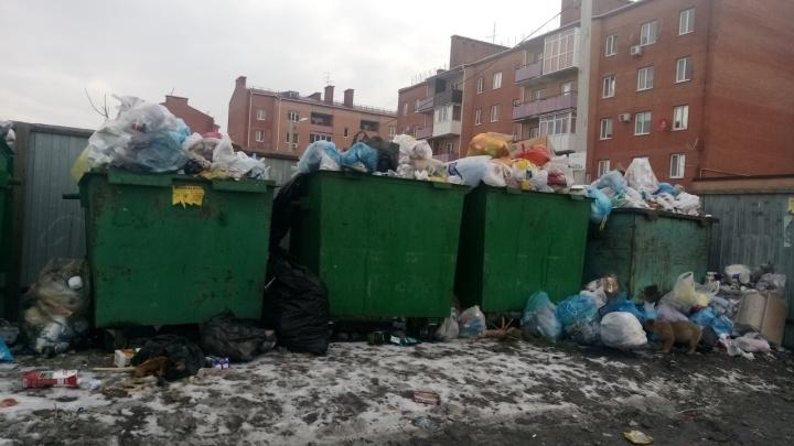 «В городе даже контейнеров нет»: жителю Новошахтинска не захотели пересчитывать цену вывоза мусора