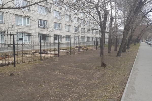В этом году благоустроят территорию НГТУ за забором, в следующем планируют взяться за небольшой участок вдоль тротуара