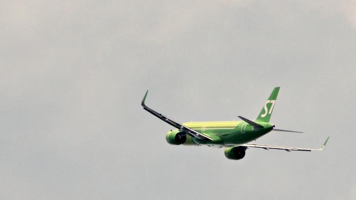 Япония подождёт: S7 приостановила прямые рейсы из Толмачёво в Токио