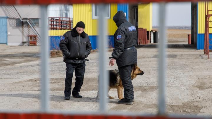«Великое стояние на Дону»: под Волгоградом делят порт ЧОПовцы и бизнесмены при контроле полиции