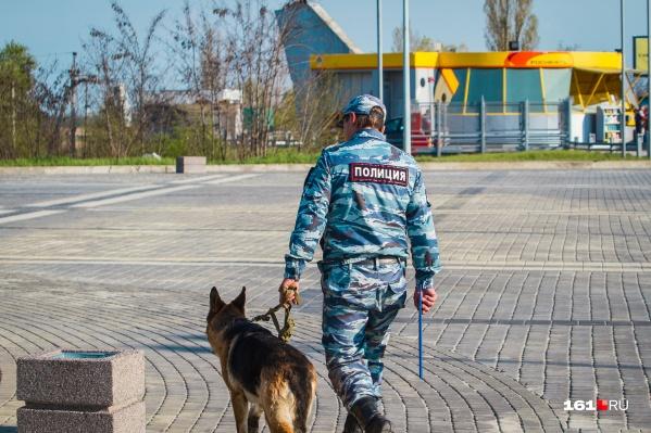 Участковый из села Песчанокопское пострадал от нападения собаки