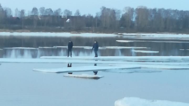 «Тоже мне мамонтята»: в Рыбинске двое подростков уплыли по Волге на оторвавшейся льдине