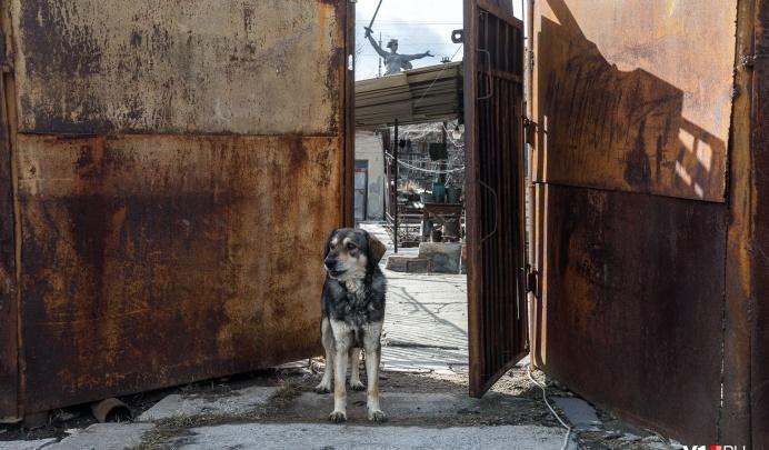 14% — за чертой бедности: Волгоградская область очутилась в хвосте регионов по доходам населения