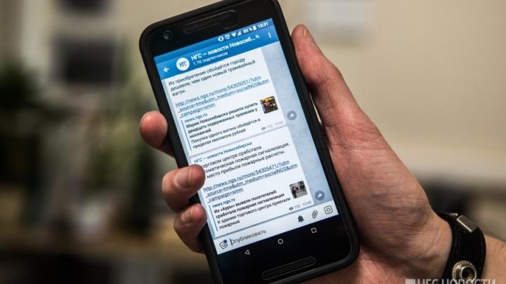 Новосибирцы завалили интернет запросами об обходе блокировок Telegram