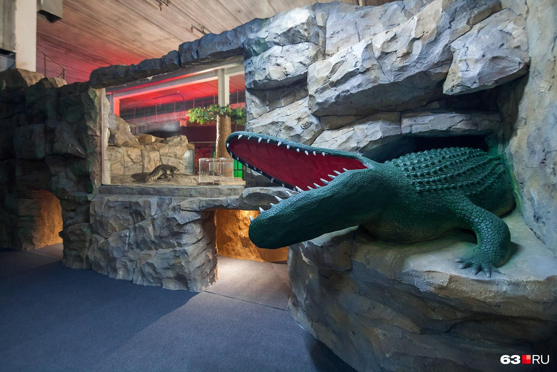 Один из входов в «крокодилью пещеру»