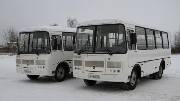 «Такое у нас в городе впервые»: чиновники рассказали об особенностях нового автобусного маршрута