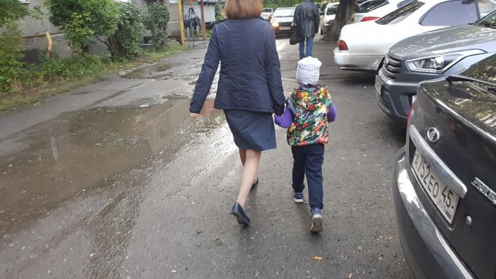 Нет разметки или пропали знаки: безопасна ли дорога в курганские школы, могут оценить родители
