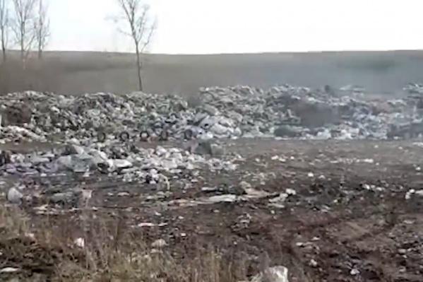 Это только малая часть мусора
