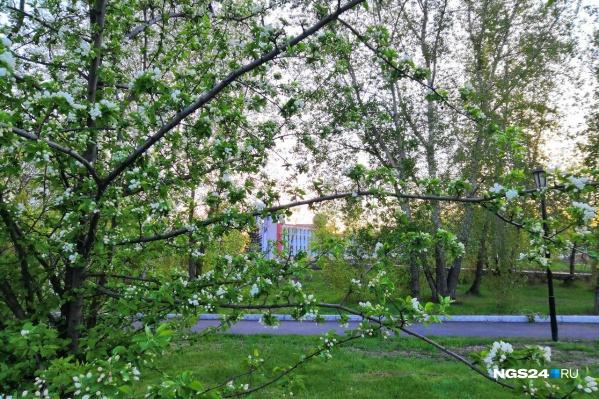 Начало лета будет холодным, а вот конец весны — очень теплым