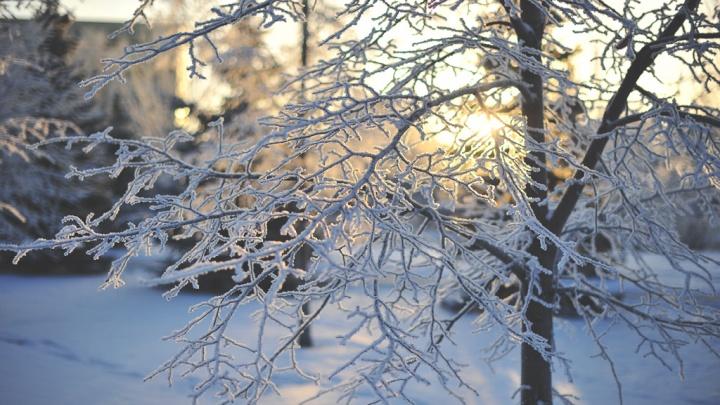 На выходных в Курган придут декабрьские морозы
