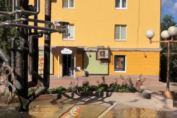 Ручьи бегут вниз по улице Полевой