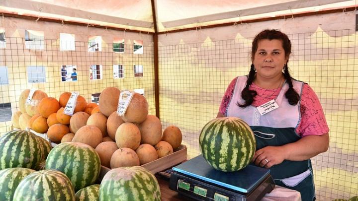 В Ярославле поставили 65 палаток с арбузами и дынями