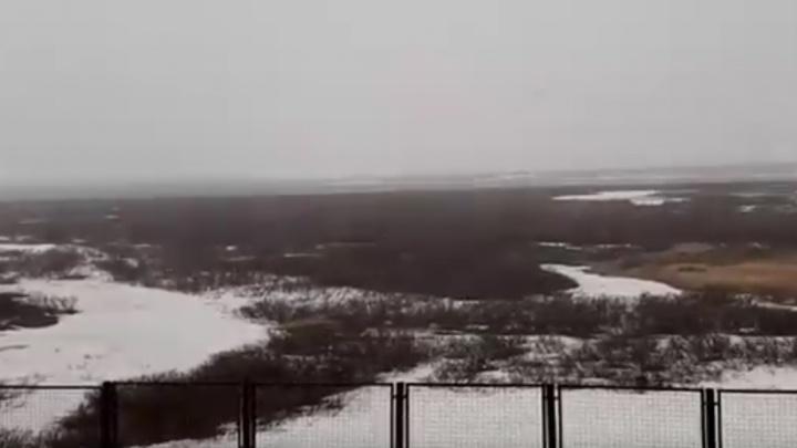 Норильск замело метелью в июне: горожане просят вернуть отопление и горячую воду
