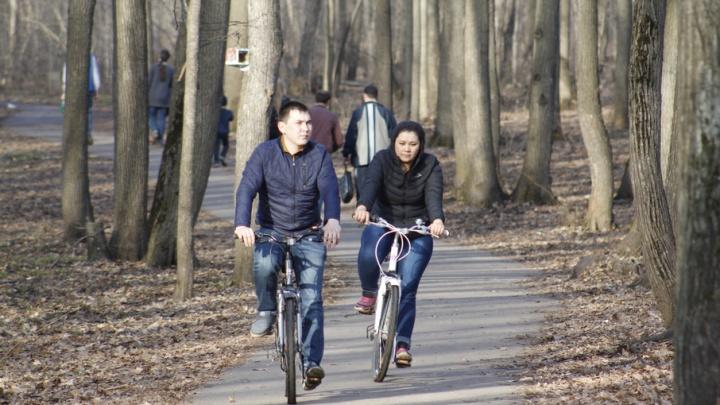 На работу на велосипеде: уфимцев приглашают на велофлешмоб