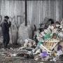 К решению «мусорного вопроса»в Архангельской области решили подключить Жириновского
