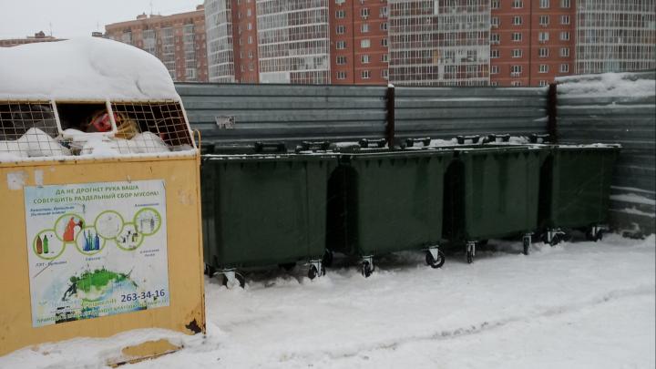 «Экология-Новосибирск» готовит обращение в прокуратуру из-за мусорного коллапса