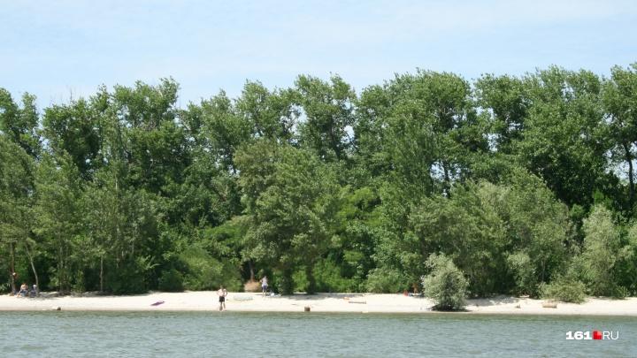 На реке Дон у Кумженской рощи перевернулась моторная лодка с тремя пассажирами