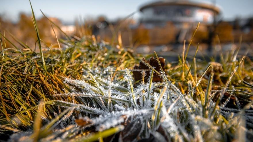 Волга в тумане и седине: публикуем самые запоминающиеся фото этой осени