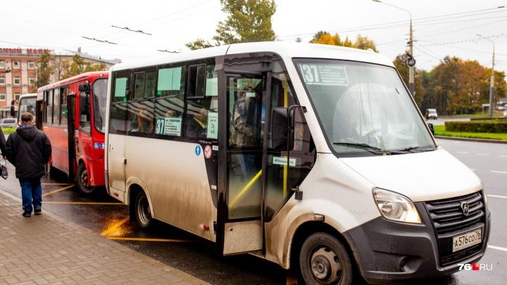 В Ярославле в городской парк автобусов закупают «Газели»