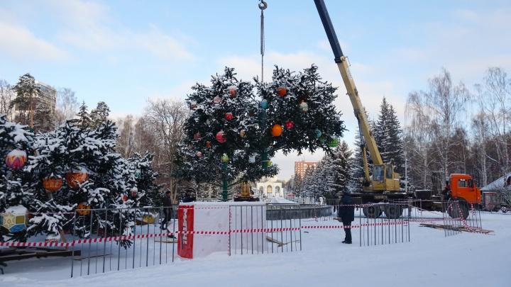 Полиция начала проверку после сообщения о том, что в ЦПКиО с высоты упал рабочий, украшавший елку