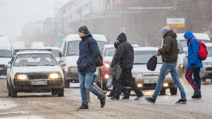 Момент настал: на Волгоградскую область несется первый снег