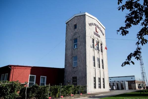 Винный завод признали банкротом в конце июня