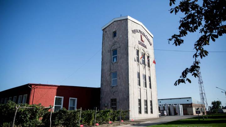 В Ростовской области перезапустили производство на «Цимлянских винах»