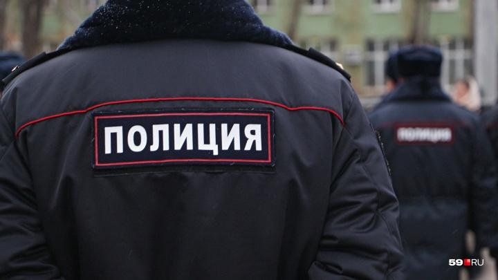 «Хотел спуститься по трубе»: в полиции рассказали подробности задержания психически больного пермяка