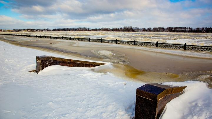 Общественник из Ярославля указал федеральным структурам на ошибки, которые могли стать причиной потопа