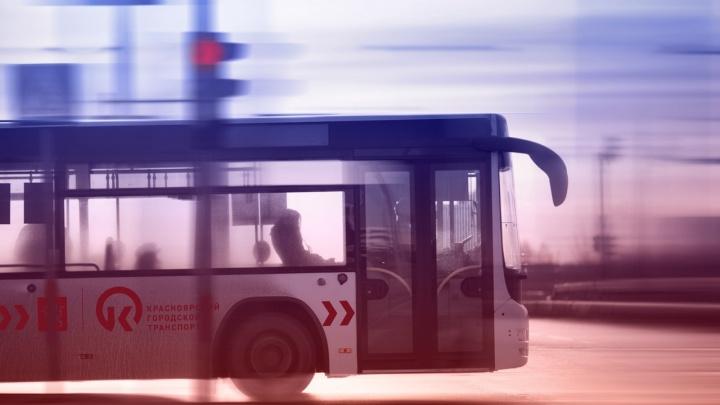 В концепции уважения: презентован фирменный стиль красноярского общественного транспорта