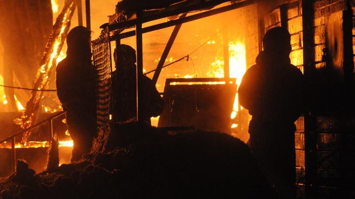 В огне на дачах погиб мужчина: его тело нашли под завалами
