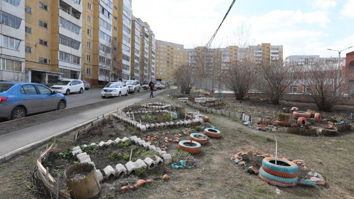 «Район ломбардов и наркотиков»: блогер Варламов раскритиковал красноярские Черёмушки