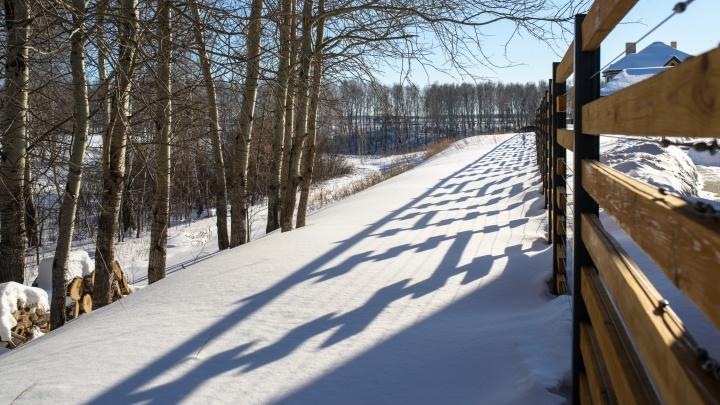 Всё про выбор участка зимой: как правильно купить землю, чтобы сэкономить и не прогадать