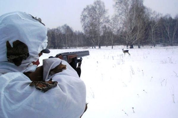 Козу должны были выгнать другие охотники, ехавшие на снегоходе