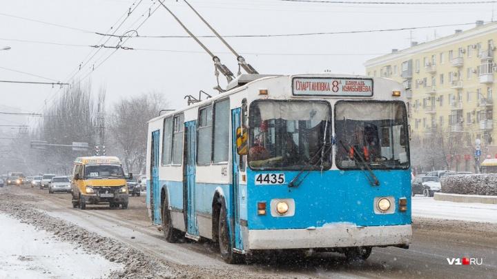 «Желающих пока нет»: волгоградский городской электротранспорт собираются передать в концессию
