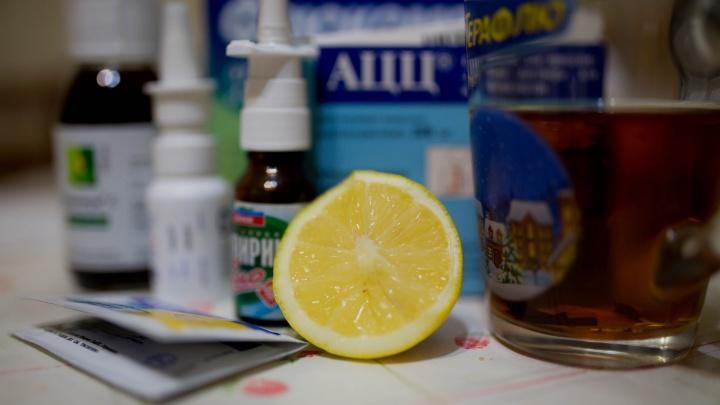Эпидемия гриппа захлестнёт Россию после Нового года: что должно быть в аптечке у каждого