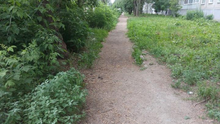 Мэрия рассказала, куда пропал тротуар у домов на Затулинке