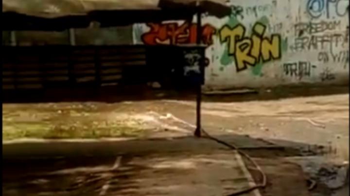 Коммунальщики со смехом слили воду из подвала во двор и разгневали жильцов