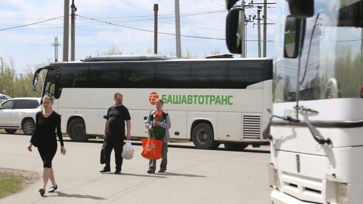 Все на праздник: в Уфе в Курбан-байрам пустят дополнительные маршруты общественного транспорта