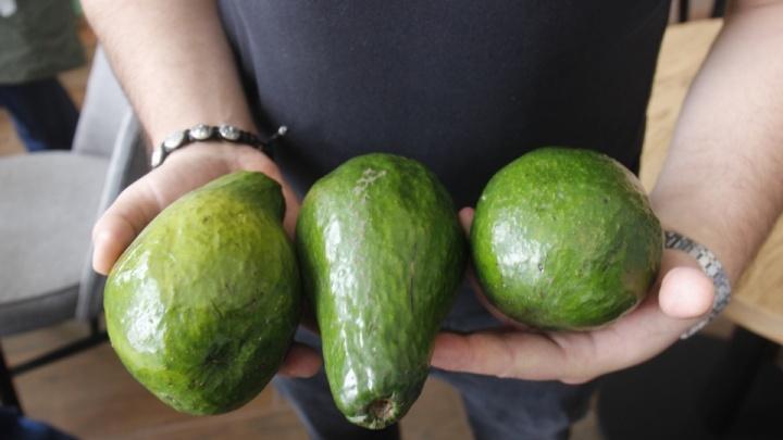 Я отказываюсь говорить без своего авокадо. Откуда этот бешеный спрос на обычную еду — колонка Стаса Соколова