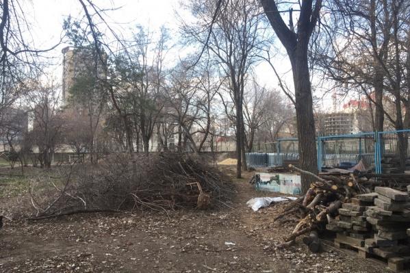 Сотрудники парка обещают навести лоск к 1 мая