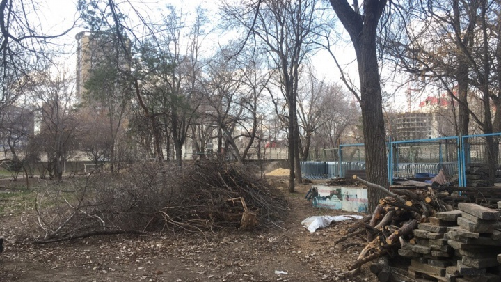 «Приходится обходить стороной»: в парке в центре Волгограда разгребают накопившийся за зиму мусор